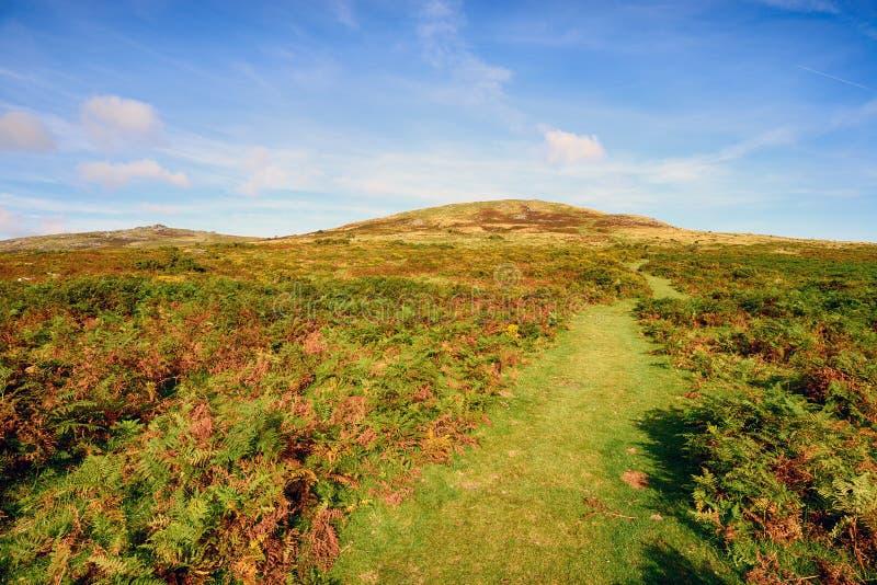 Dartmoor em Devon imagens de stock