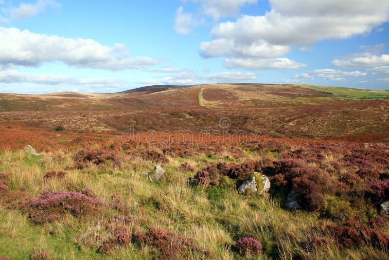 dartmoor hamel荒野对突岩视图 库存图片