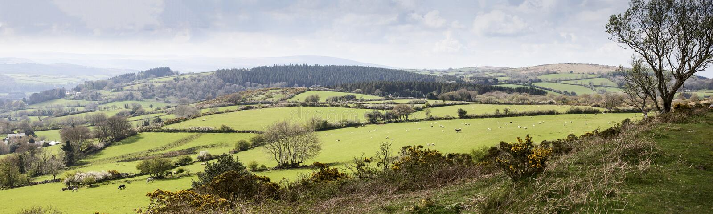 Dartmoor jordbruksmark royaltyfria foton