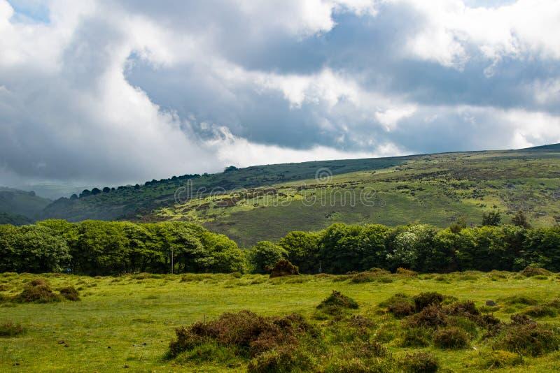 Dartmoor nationalpark royaltyfri fotografi