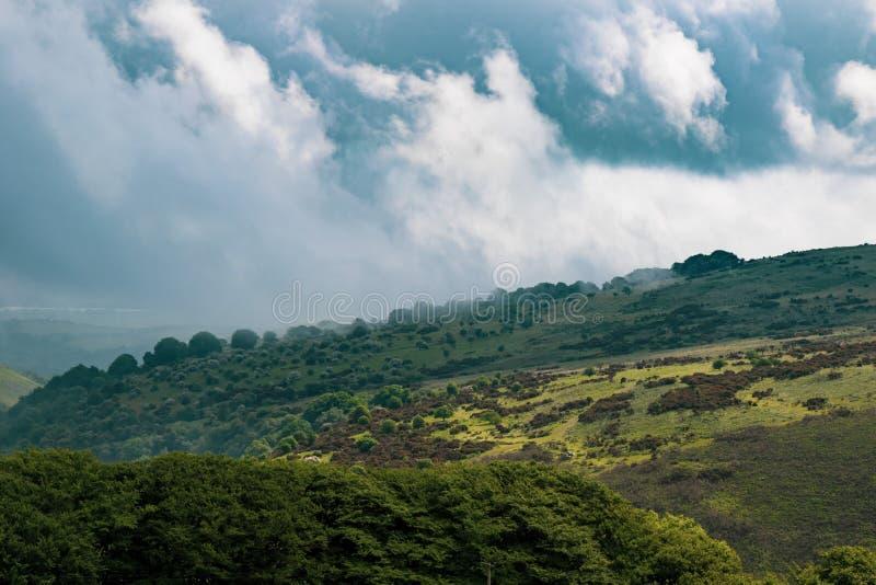 Dartmoor nationalpark fotografering för bildbyråer