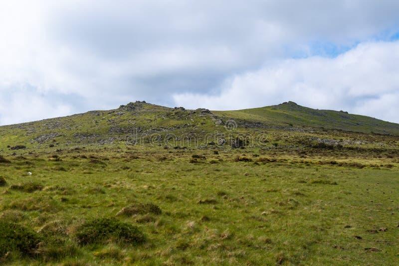 Dartmoor nationalpark royaltyfri bild