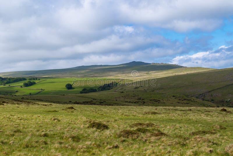 Dartmoor nationalpark royaltyfri foto