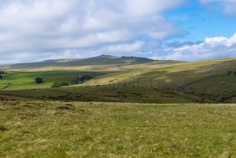 Dartmoor nationalpark arkivfoto