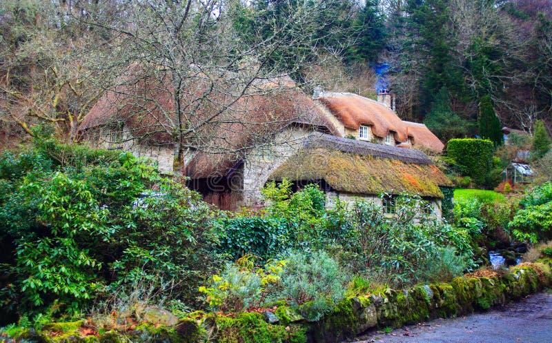 Dartmoor pokrywał strzechą chałupy dartmoor UK obraz stock