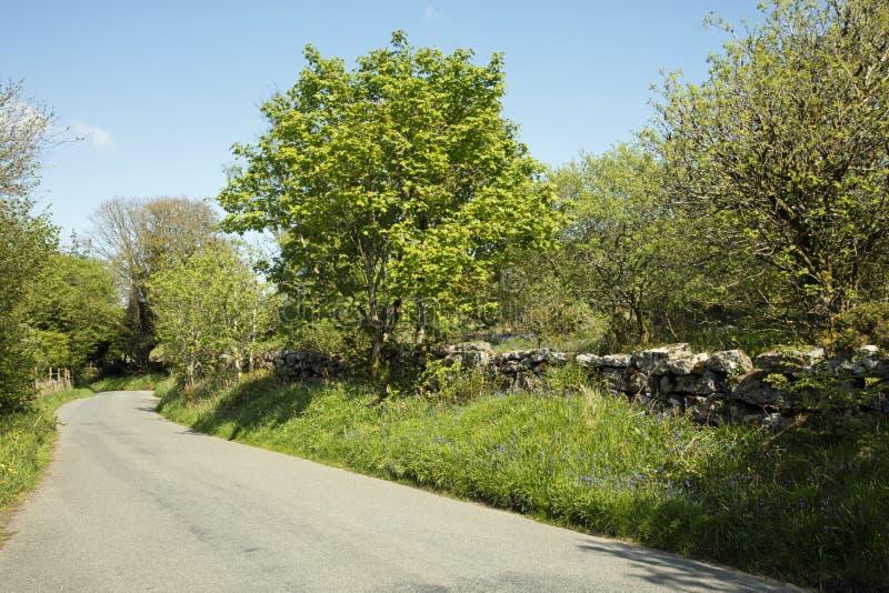 Dartmoor. Road in Dartmoor National Park Devon England stock images