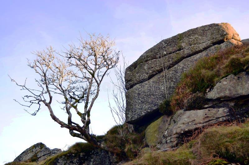 Dartmoor rurale con le rocce ed il chiaro cielo blu fotografia stock libera da diritti