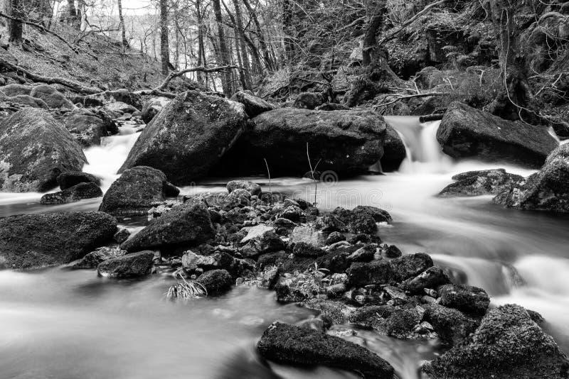 Dartmoor svartvitt landskap royaltyfria bilder