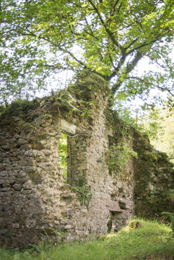 Dartmoorboerderij royalty-vrije stock afbeeldingen