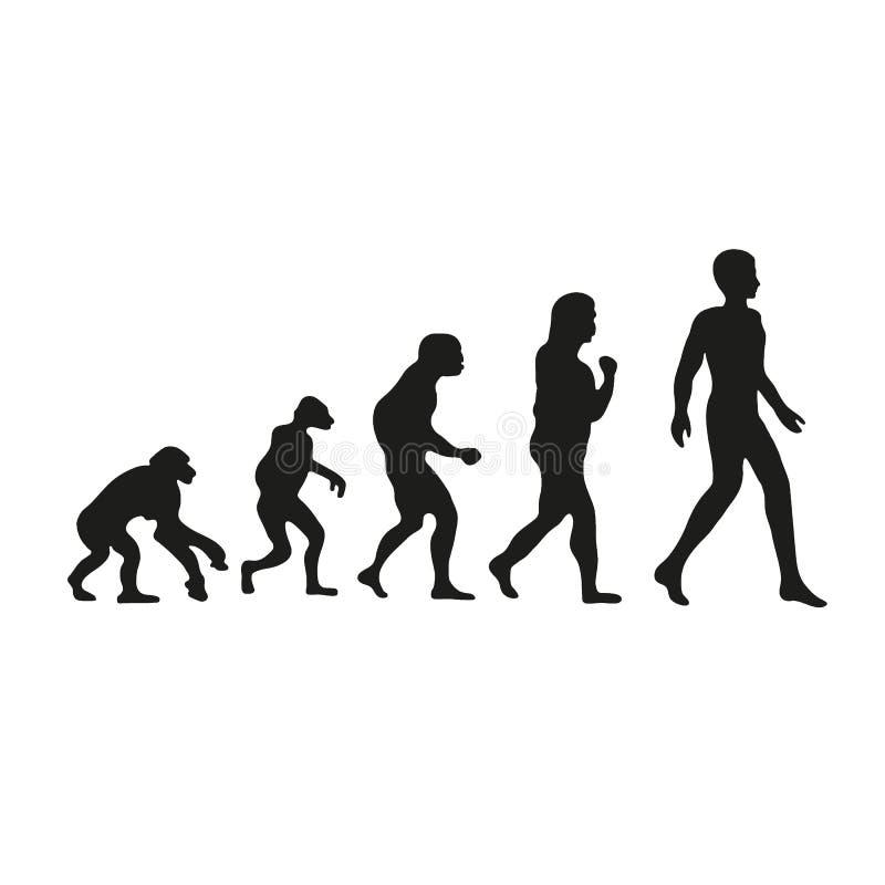 Darwin-Entwicklung des Menschen Vom Affen zu den modernen Leuten lizenzfreie abbildung