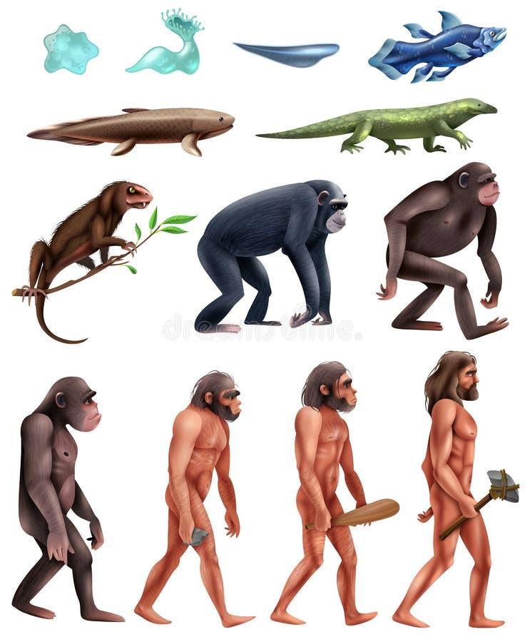 Darwin ewoluci ikony set ilustracji