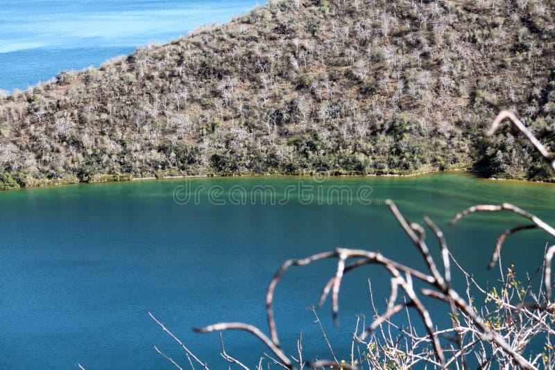 Darwin Lake Isabela Island (de Galapagos, Ecuador) royalty-vrije stock foto's