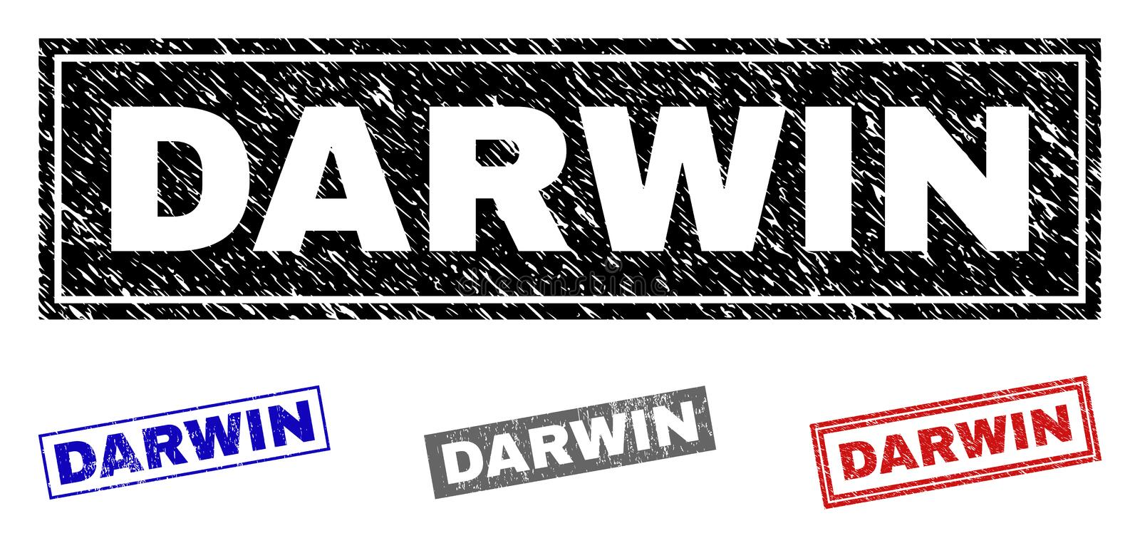 DARWIN Scratched Rectangle Stamps grunge illustration libre de droits
