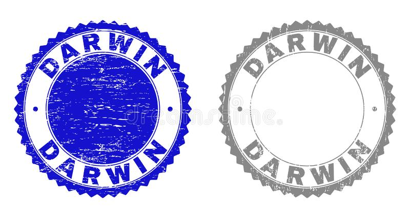 DARWIN Scratched Stamps grunge illustration stock
