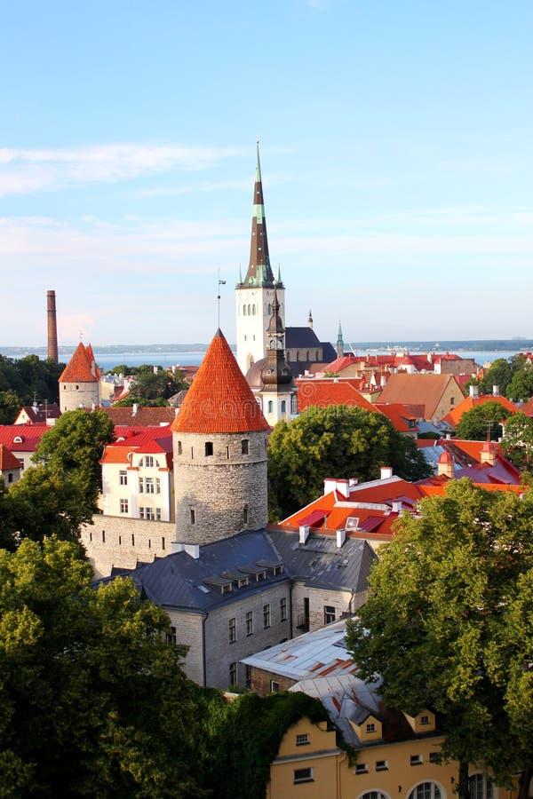 Das alte Tallinn stockbild
