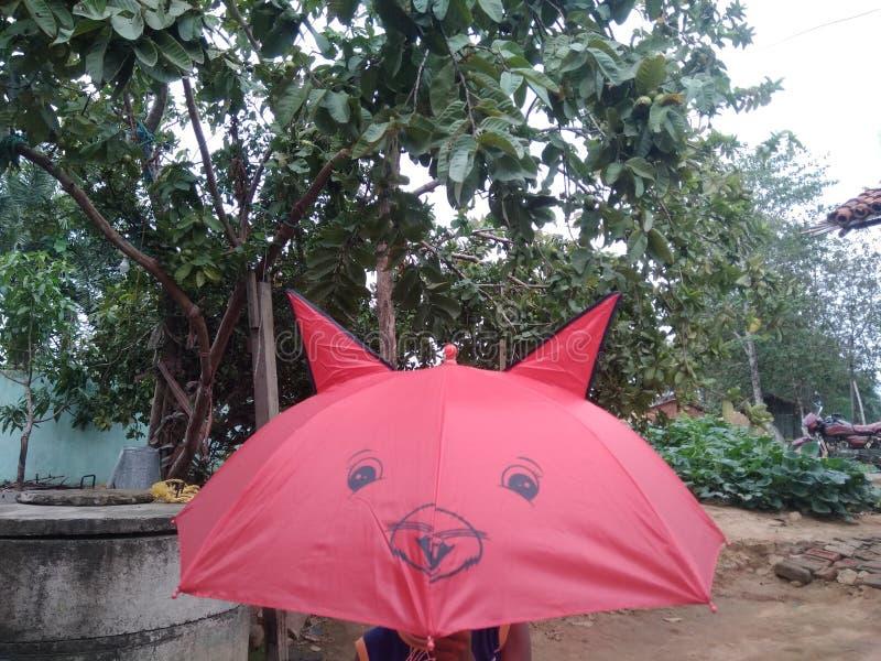 Das Ambralla ist sehr Vorliebe für Kinder die, die gehende Schule sind stockbild