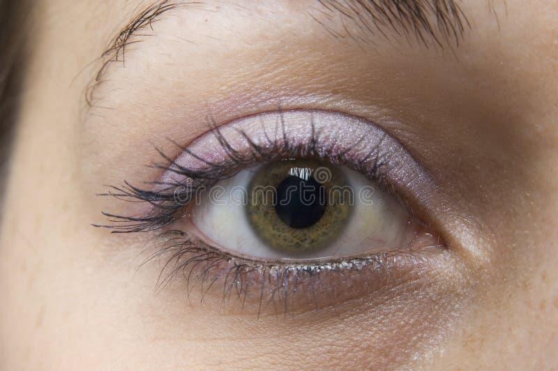 Das Auge lizenzfreie stockfotografie