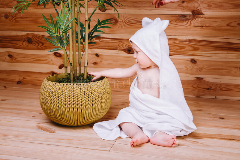 Das Baby eingewickelt in einem weißen Tuch, das auf hölzernem Hintergrund nahe einem Bambusbaum im Topf sitzt lizenzfreies stockfoto