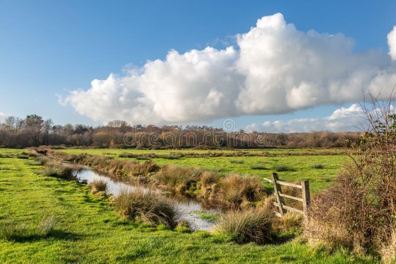 Das Bahnland in Lewes stockbild
