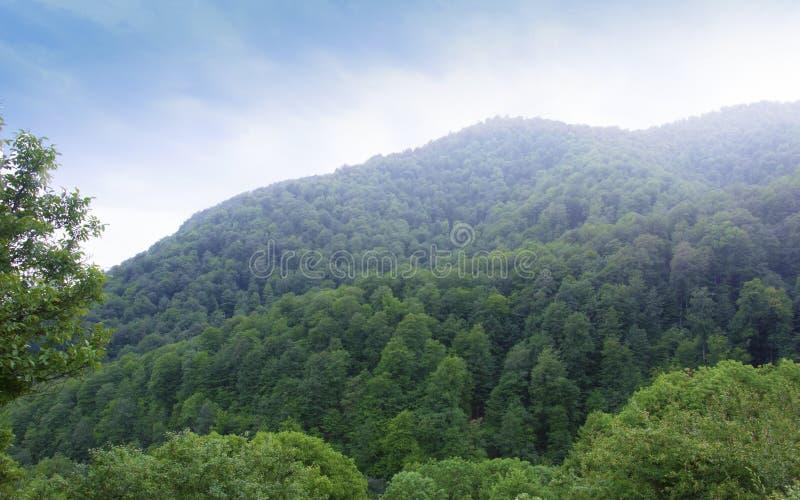 Das bewaldete Tal der Ijevan-Strecke Nebel über den Bergen Ansicht vom Kloster Haghartsin armenien lizenzfreie stockfotos