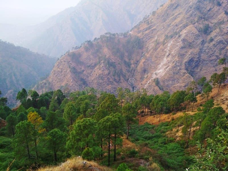 Das Bild des Berges und der Bäume lizenzfreie stockfotografie