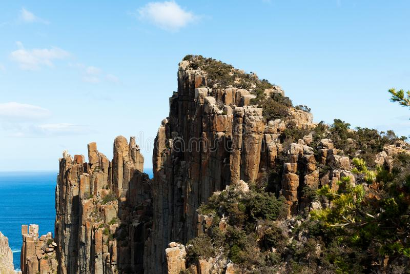 Das Blatt an der Kap-Säule, Tasmanien, Australien lizenzfreie stockfotografie