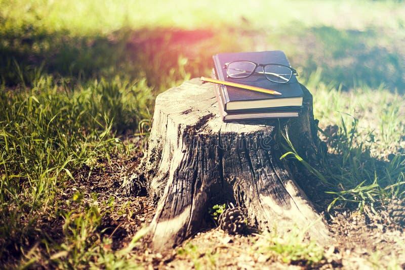 Das Buch, das über ihm geschlossen wird, ist ein Bleistift, Gläser auf einem Auslöser ein Baum herein stockbilder