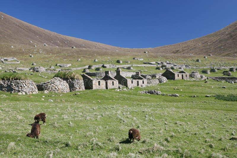 Das Dorf, Str. Kilda lizenzfreie stockbilder