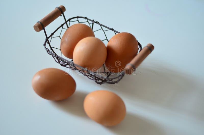 Das Ei lizenzfreies stockfoto