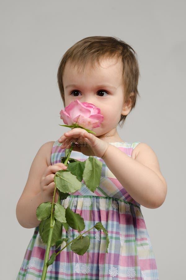 Das entzückende Baby, das rosafarben riecht, stieg lizenzfreies stockfoto