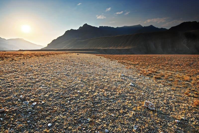 Das felsige Tal. Berg Altai lizenzfreie stockfotos
