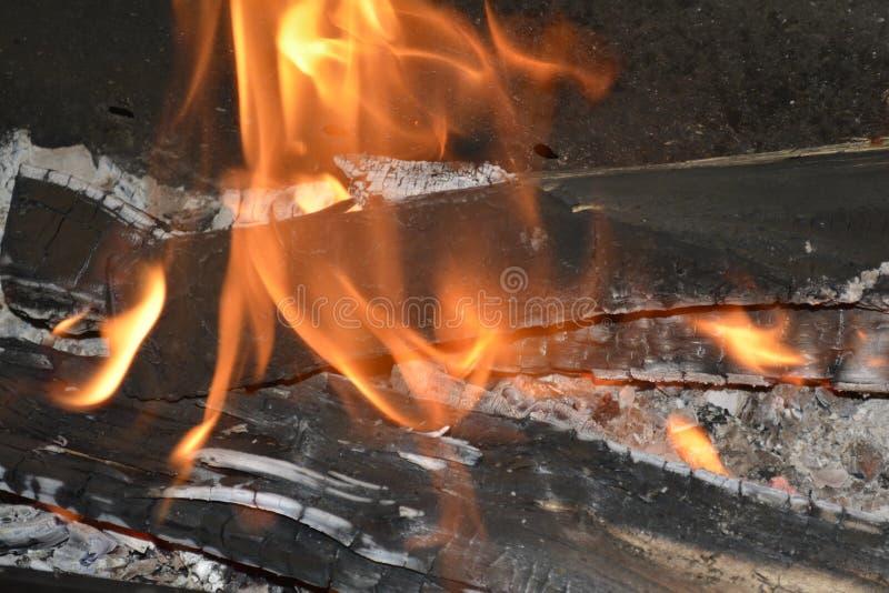 Das Feuer eines Feuers im Freien stockfoto