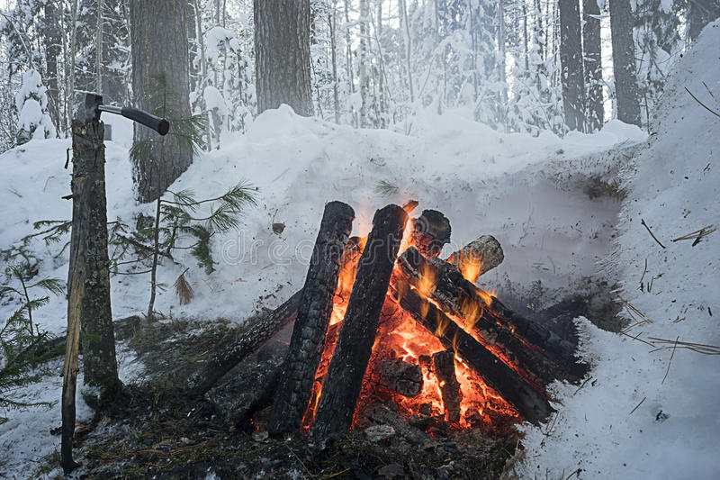Das Feuer im Winterwald stockbilder