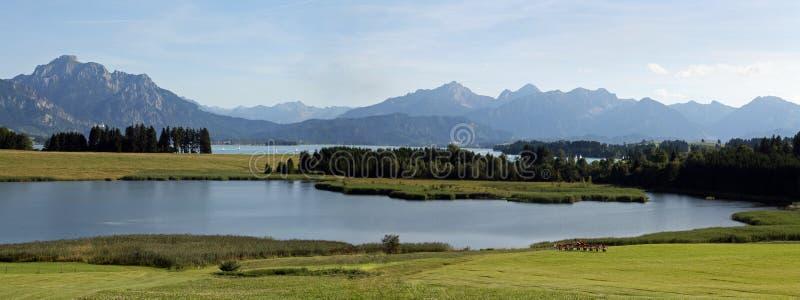 Das Forggensee im Bayern stockbild