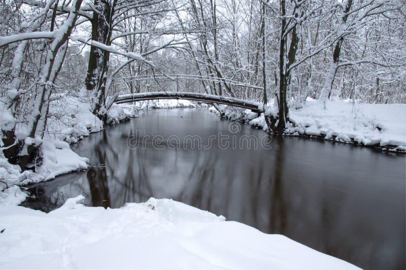 Fluss im Winter. lizenzfreie stockfotos