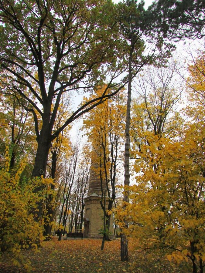 Das Gebäude im Park im Herbst stockbild