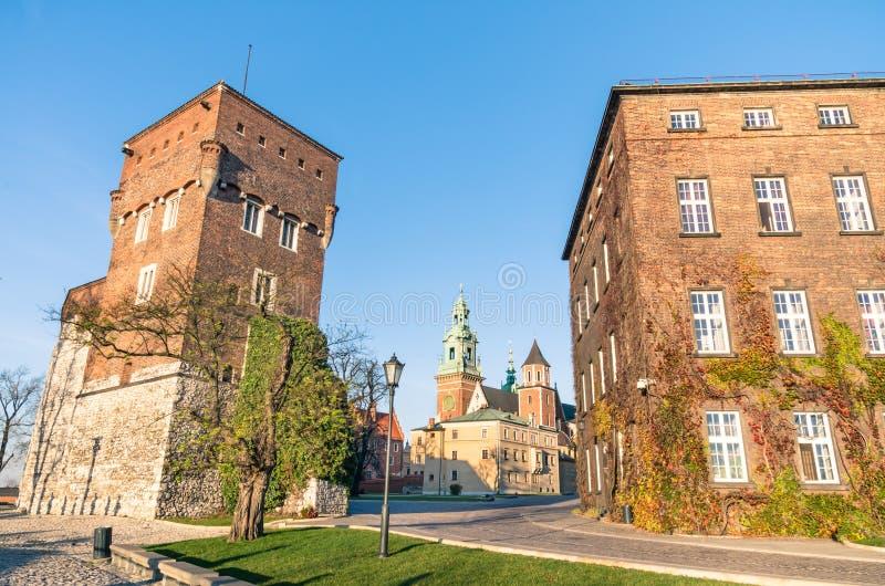 Das gotische Wawel-Schloss in Kraków lizenzfreie stockfotografie
