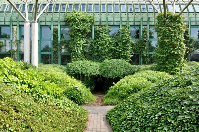 Das grüne Dach der modernen Bibliothek von Warschau-Universität stockfotos