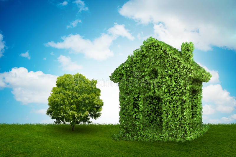 Das grüne Haus und der Baum im ökologischen lebenden Konzept - Wiedergabe 3d stock abbildung