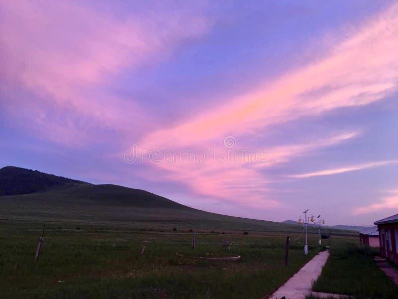 Das Grasland bei Sonnenaufgang stockfotos