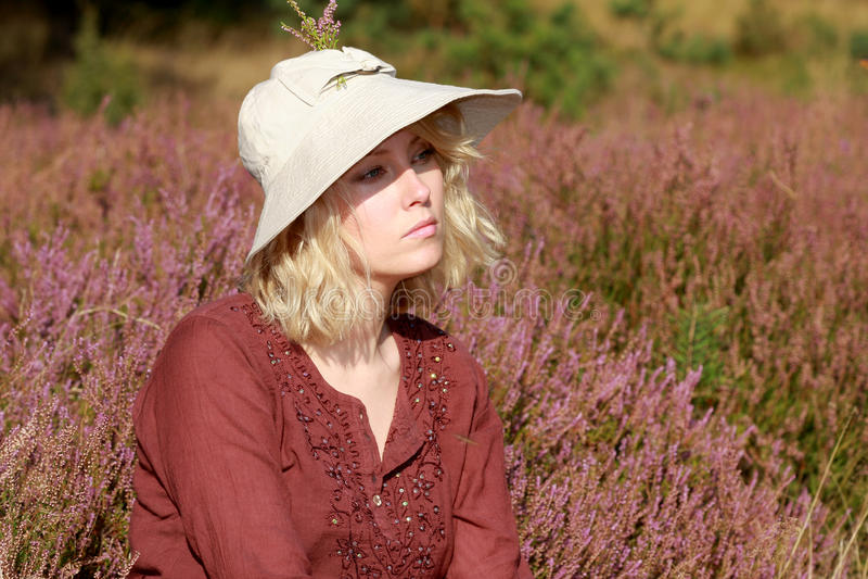 Das Heidekraut mit dem Herbst lizenzfreie stockfotos