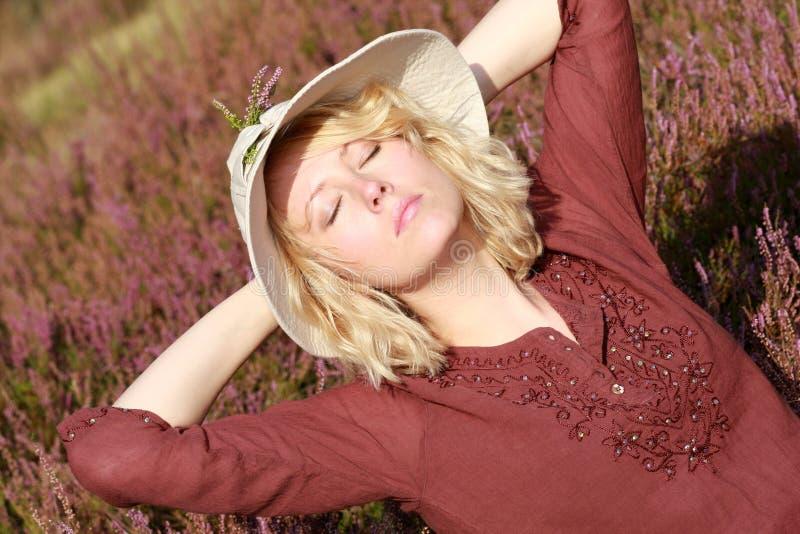 Das Heidekraut mit dem Herbst lizenzfreie stockfotografie