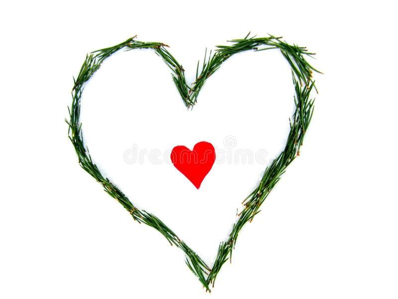 Das Herz hat auch ein Herz! Das Herz innerhalb des Herzens stockfotos