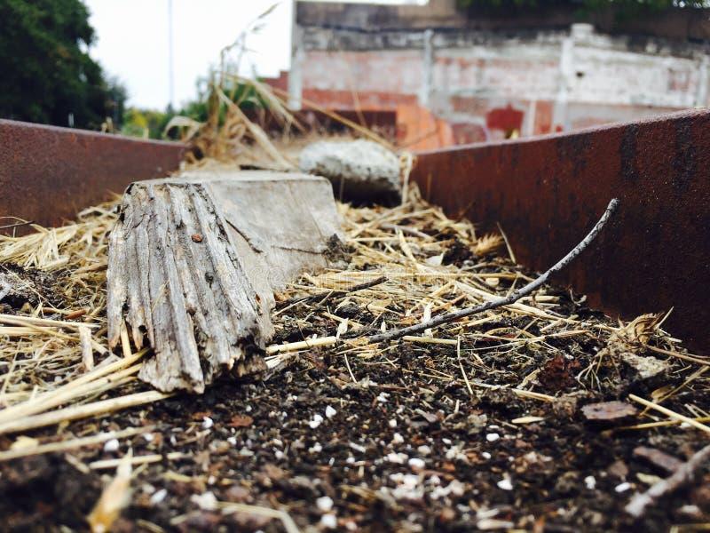 Das Holz stockfoto