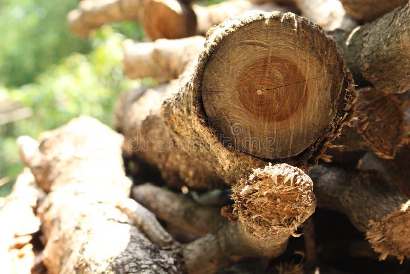 Das Holz vorbereitet, um zu brennen lizenzfreies stockbild