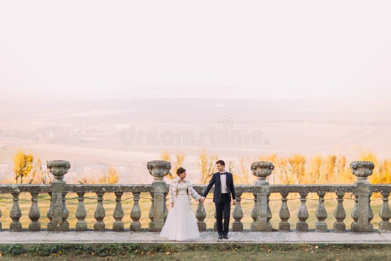 Das horizontale Foto des Jungvermähltenhändchenhaltens in der Front des wunderbaren Panoramas lizenzfreie stockbilder