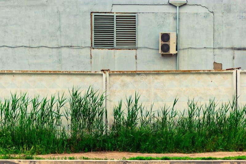 Das industrielle Buiding mit Klimaanlage hinter Betonmauer mit Schilf w?chst vor stockfotos