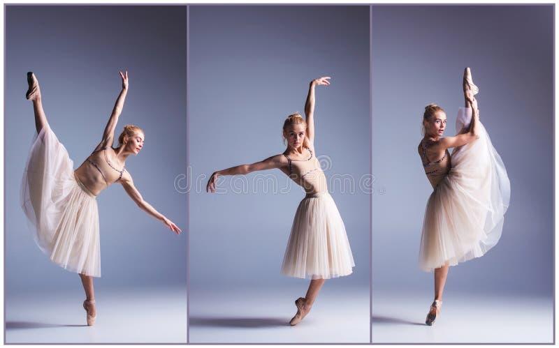 Das junge schöne Ballerinatanzen auf einem grauen Hintergrund collage stockbilder