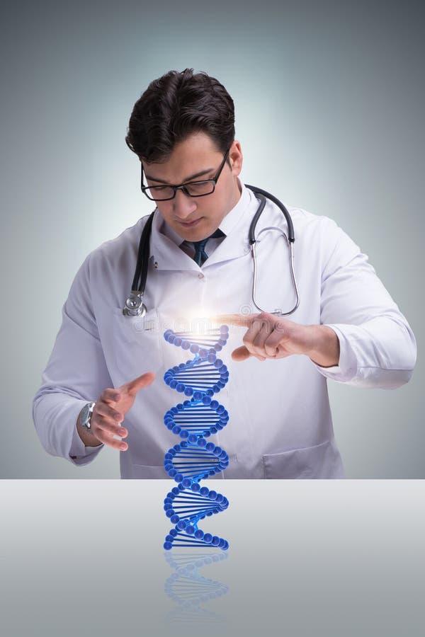 Das junge studentresearcher, das DNA-Struktur studiert lizenzfreie stockfotografie