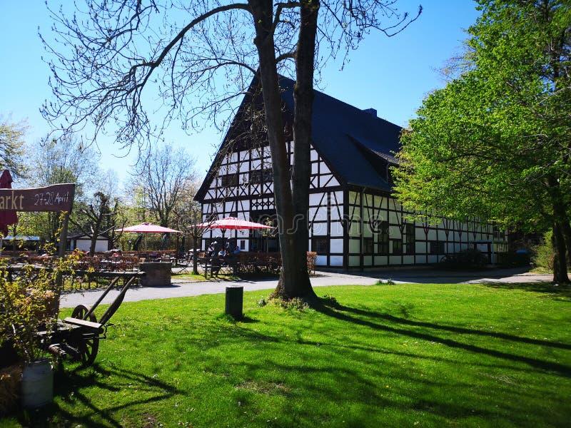 Das kawiarni im park obraz royalty free
